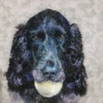 Needlefelted for Portrait or Landscape