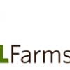 D L Farms Alpaca